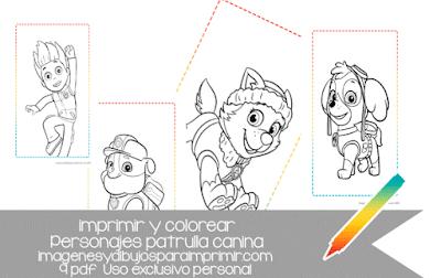 imprimir y colorear patrulla canina