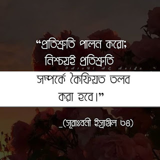 Islamic Picture And Islamic Quote. Only For Bangla Language | Best Bangla Quotes Collection