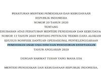 Permendikbud Nomor 20 Tahun 2020 Tentang Perubahan Petunjuk Teknis BOP PAUD dan Pendidikan Kesetaraan