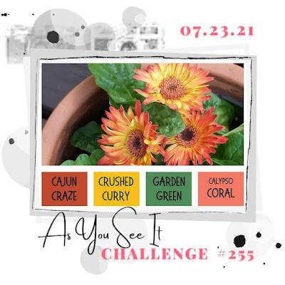 challenge 255