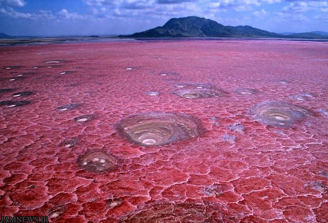 Λίμνη Natron, Τανζανία