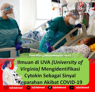 Ilmuan di UVA (University of Virginia) Mengidentifikasi Cytokin Sebagai Sinyal Keparahan Akibat COVID-19