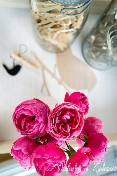 Ein Strauß Rosen zum Friday Flowerday