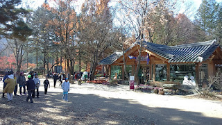 Things To Do In Nami Island - Enjoy the Cuisines, Coffee and Desert