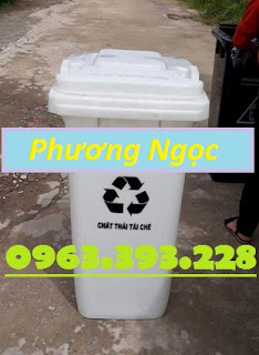 Thùng đựng rác công cộng 120L, thùng rác 2 bánh xe, thùng rác nhựa HDPE 120 Lít TR120L5