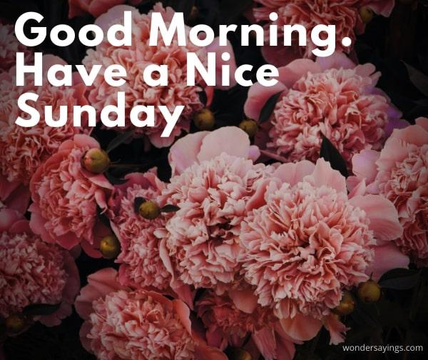 happy-Sunday-pic