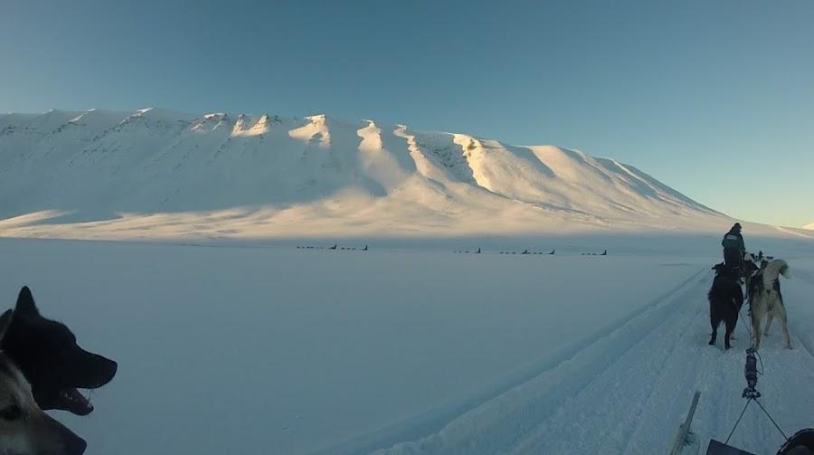 paseo-trineo-de-perros-bolterdalen-artico-noruega-enlacima