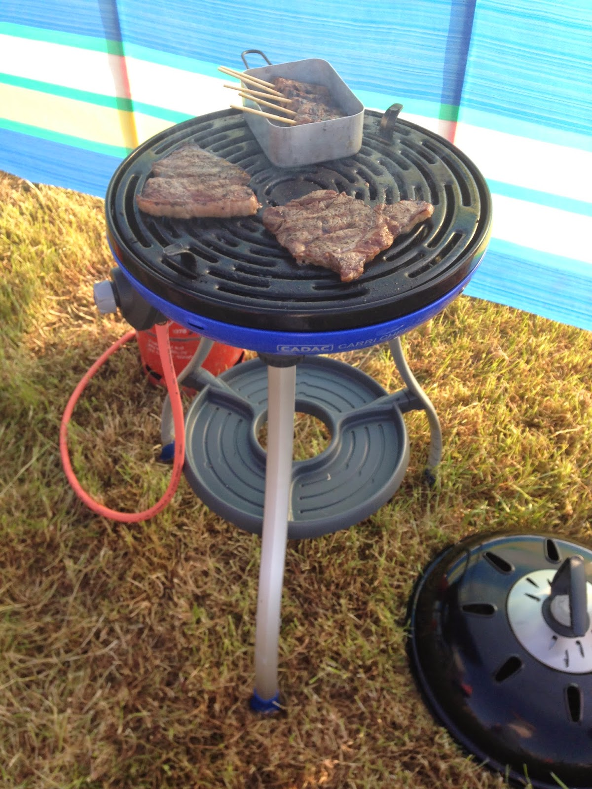 Steaks and kebabs cook on a barbecue