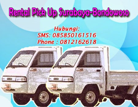 Rental Pick Up Zebra Surabaya-Bondowoso