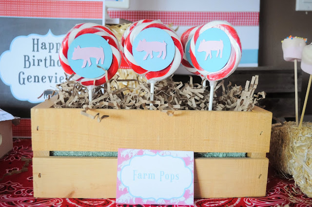 lollipops at a Charlotte's web birthday party or a Farm party