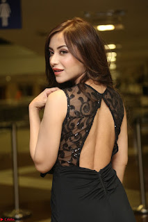 Angela Krislinzki in Transparent Black Gown at Rogue Movie Teaser Launch 1st March 2017 023.JPG