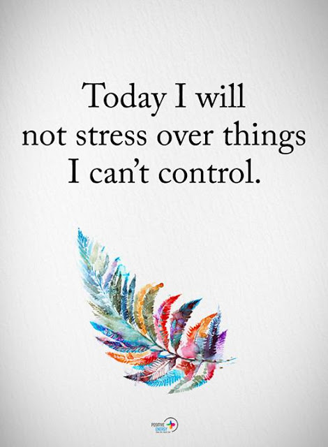 Today I will not stress over things I can't control quote