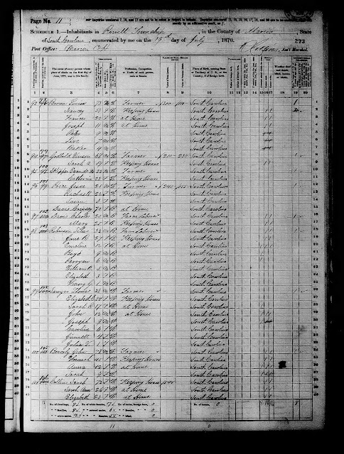 The 1880 Census for Julia V.