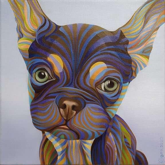 06-French-Bulldog-Puppy-Kate-Hoyer-www-designstack-co