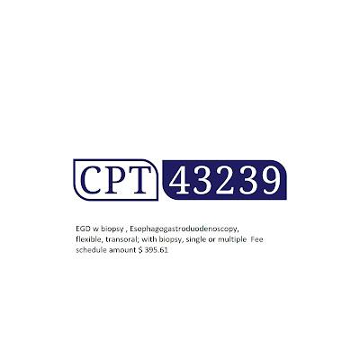 CPT 43239 Description