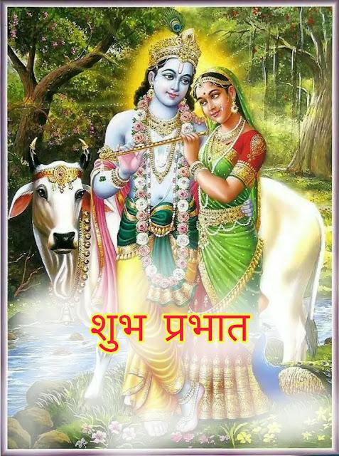 good morning krishna pics