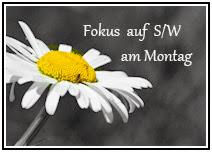 http://wwwchristas-hobbyblog.blogspot.de/2013/09/ubernahme-fokus-auf-sw-am-montag.html