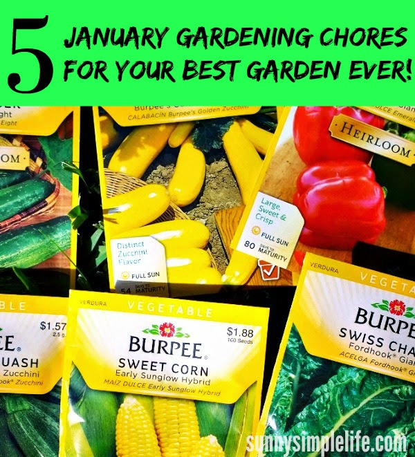garden seeds, Burpee seeds