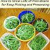 How to Grow Pole Beans #vegetable_gardening