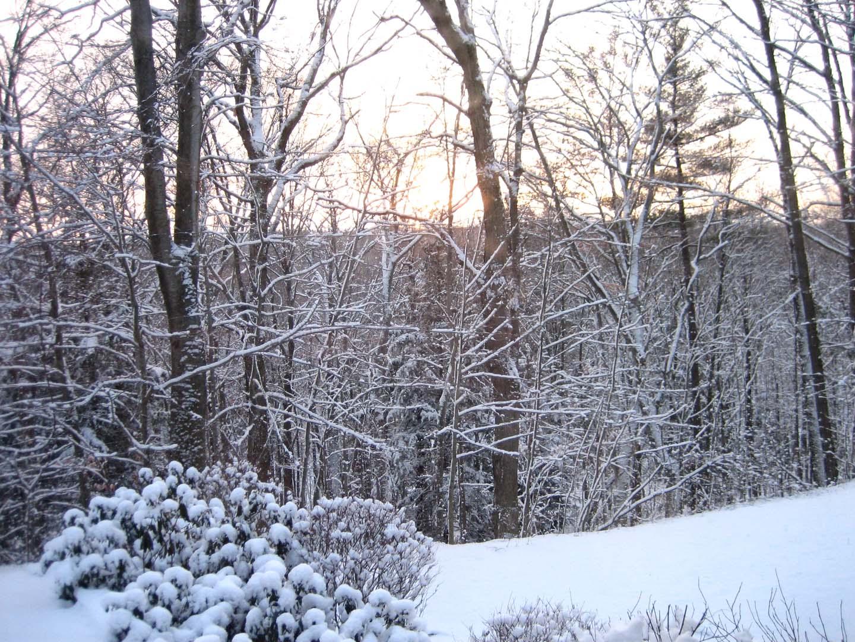 Designs By Terri Gordon: Our First Real Snow Fall This Season