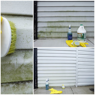 scrubber simple green spray mold house outside clean easy diy
