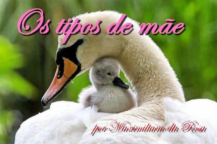 Os tipos de mães - Por Maximiliano da Rosa