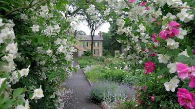 Jardines del Museo Florence Griswold, la casa del impresionismo americano