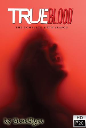 True Blood Temporada 6 [2013] [720p] [Latino-Ingles] HD 1080P [Google Drive] GloboTV