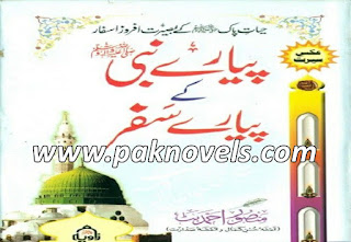 Pyare Nabi Ke Pyare Safar Urdu Book