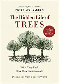 The cover of the book The Hidden Life of Trees by Peter Wohllesen.