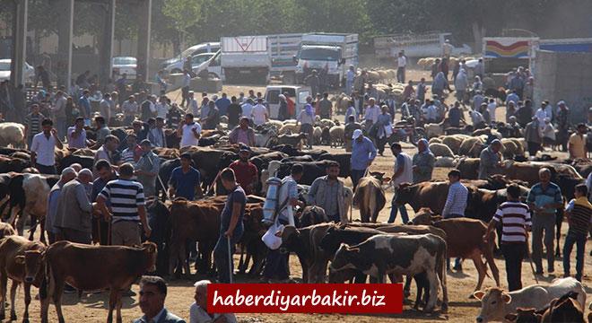 Diyarbakır canlı hayvan borsası çarşamba günü kapatılmasın