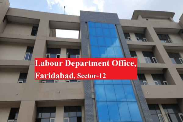 faridabad-deputy-labour-commissioner-sudha-chaudhary-suspended-news
