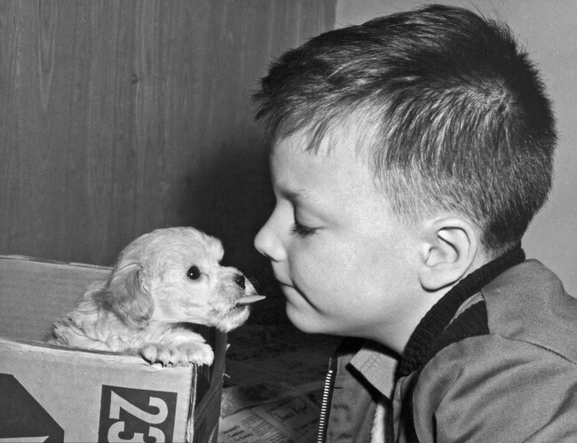 29 Pictures Of Children Of The Past Show The Differences Between Generations - They used to love animals and treat them as friends.