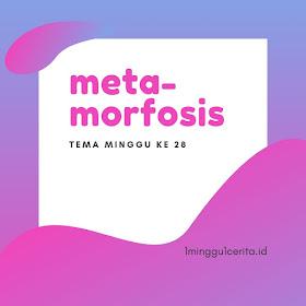 metamorfosis blog ewafebri