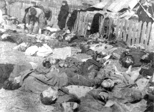 Poland Ukraine Volhynia massacre Banderites genocide crime
