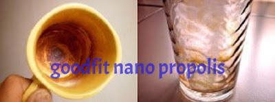 manfaat propolis untuk asam urat, khasiat propolis untuk asam urat, dosis propolis untuk asam urat