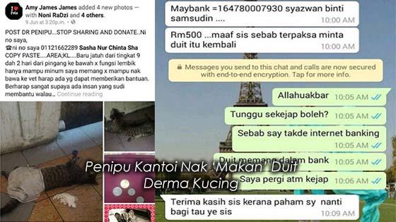 Penipu Kantoi Nak 'Makan' Duit Derma Kucing