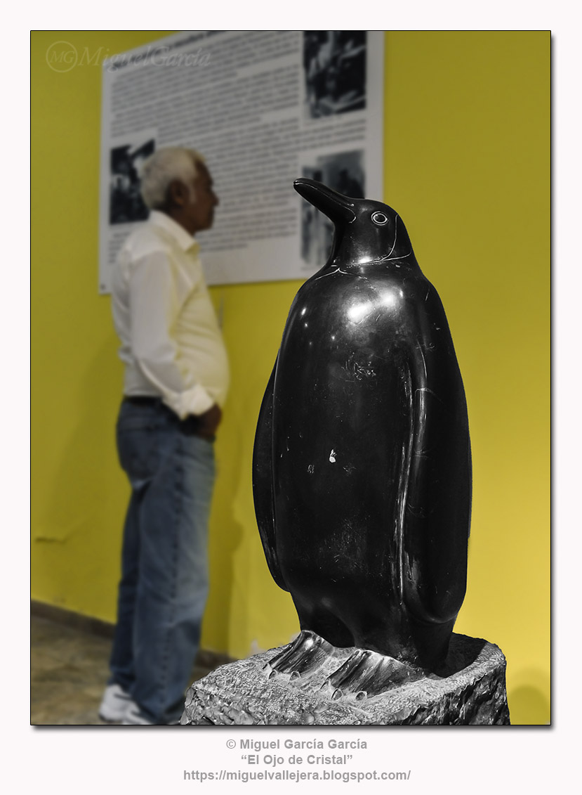 Pingüino, talla directa del escultor Mateo Hernández.