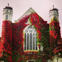 Images of Ireland: NUI Galway quad with red foliage