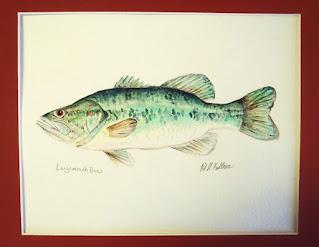 Largemouth Bass, Pat Kellner, P. H. Kellner, Fishing Art, Fly Fishing Art, Texas Freshwater Fly Fishing, TFFF, Fly Fishing Texas, Texas Fly Fishing