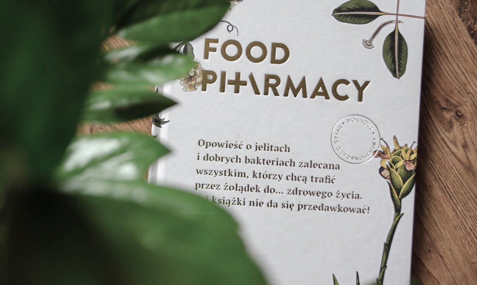 food pharmacy | książka | recenzja | papier | kot | rośliny | liście | poradnik