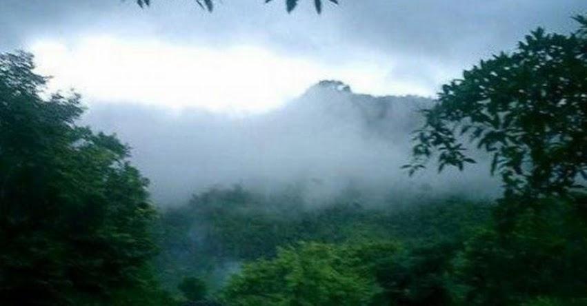 SENAMHI ALERTA: Decimoquinto friaje del año afectará a la selva sur y centro desde mañana - www.senamhi.gob.pe