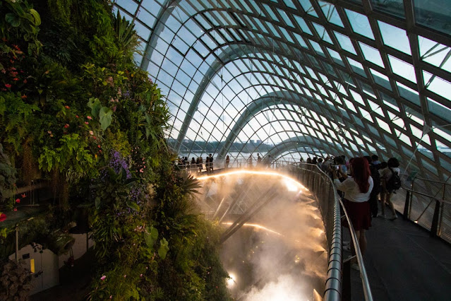 Cloud forest-Gardens by the bay-Singapore