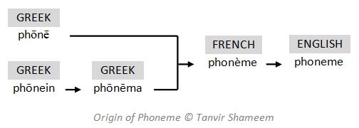 Origin of Phoneme