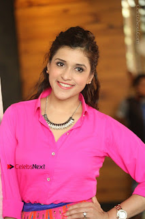 Actress Mannar Chopra in Pink Top and Blue Skirt at Rogue movie Interview  0160.JPG