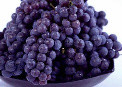 anggur ungu penangkal radikal bebas