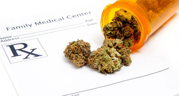 medical cannabis oil cures cancer