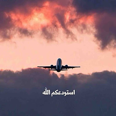 صور الوداع وطائرة تحلق عالياً
