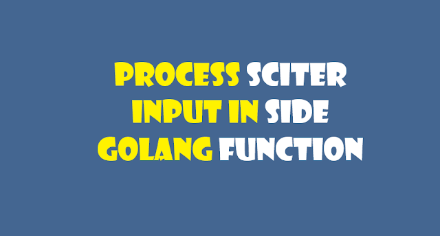 process golang input in sciter