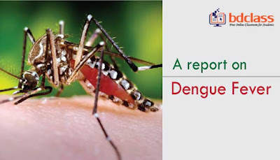 report on dengue fever for hsc